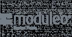 logo module
